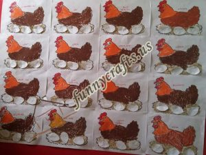 chicken-bulletin-board