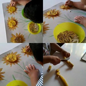 fine-motor-sunflower-activities