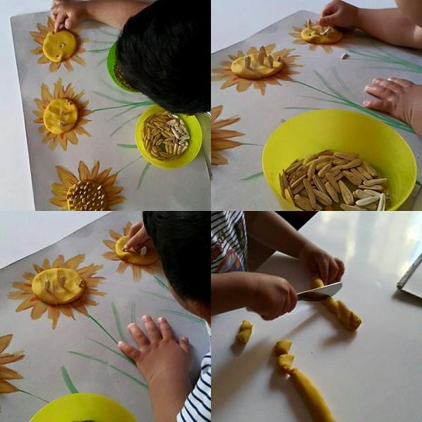 fine-motor-sunflower-activities
