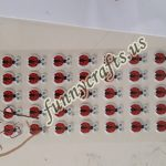 Ladybug counting activity