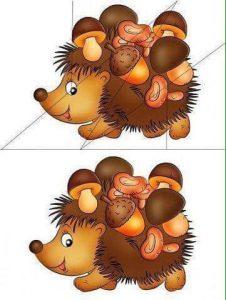 hedgehog-cutting