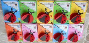 ladybug-craft-for-graduation