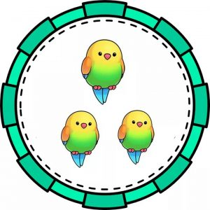 parrot-math-flashcards-for-kids