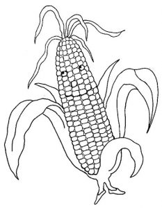 vegetables-coloring-free-15