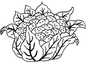 vegetables-coloring-free-16