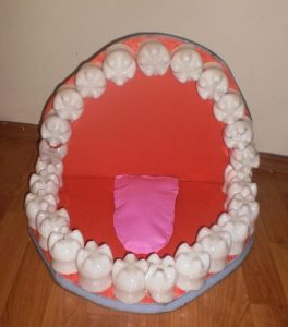 activities-about-teeth-1
