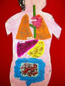 human-body-craft-ideas-1
