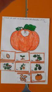 pumpkin-craft-for-kids-3