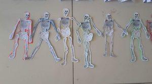 skeleton-craft-3