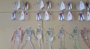 skeleton-craft-4
