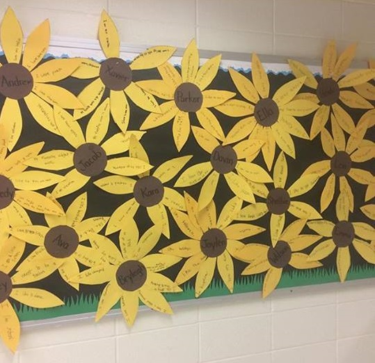 sunflower classroom activity