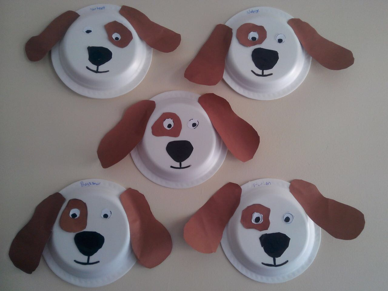 Photo of Paper plate craft and project